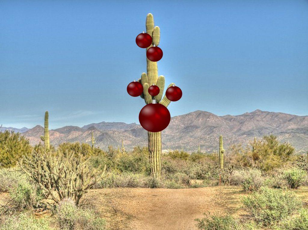 Southwest-Christmas-Feature