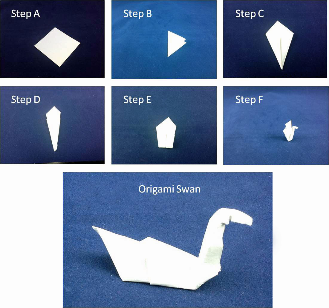 84 Origami Steps Swan How To Make An In 9 Easy 3d Diagram Http Howtoorigamicom Origamiswanhtml Step 4
