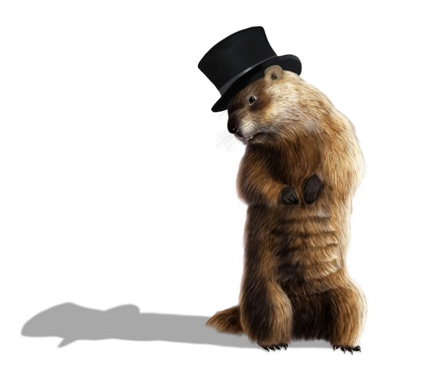 Groundhog Day: The History & Facts You Didn't Know | OrnamentShop.com