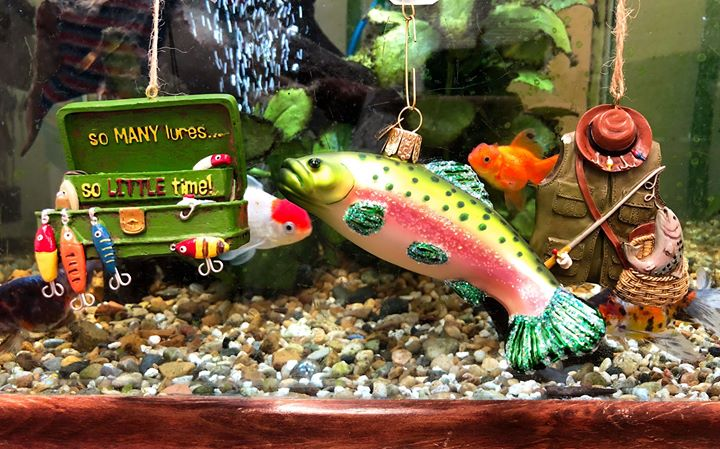 Fishing ornaments including a bass, tackle box and vest in front of a live fish tank. | OrnamentShop.com